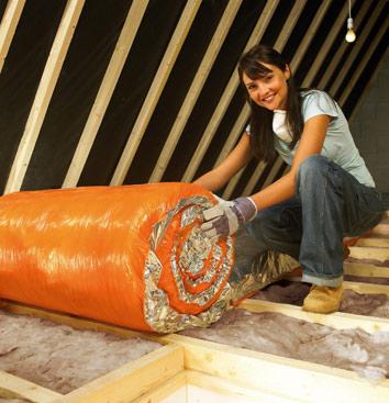 Loft Insulation 361